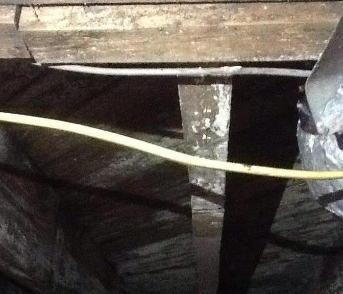Mold in Crawlspace - Chapin, SC Before