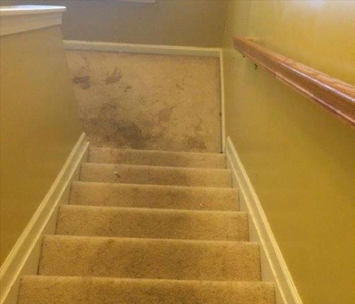 Carpet Cleaning in Columbia, SC Before
