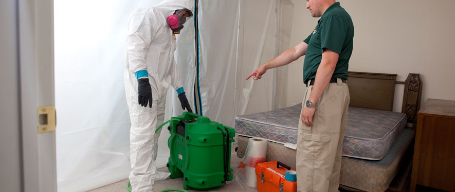 Columbia, SC mold removal process